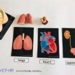 pic card_organs_A5