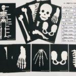 pic card_skeleton_A5