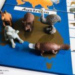 pic cards_continents
