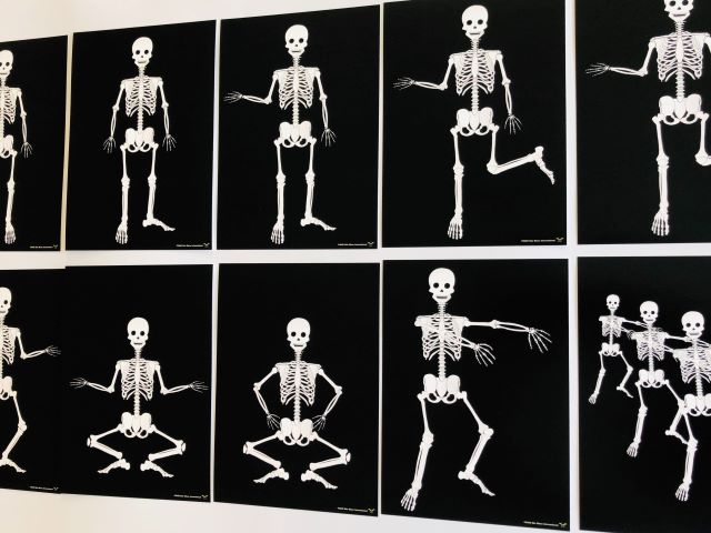 pic card_skeleton exercise_laminated
