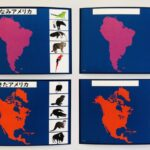 pic cards_continents_Japanese_laminated