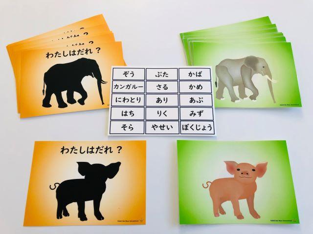pic card_animas_A5_Japanese_laminated