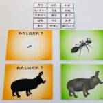 pic card_animas_A5_Japanese