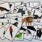 pic cards_animals 35_Japanese