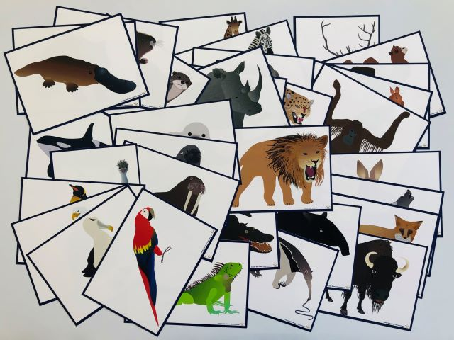 pic cards_animals 35_laminated